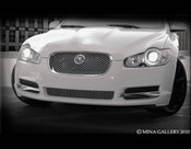 Jaguar XF Lower Middle Mesh Grille (07-2011)