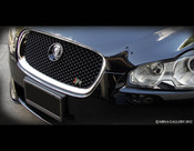 Jaguar XF & XFR Black Pak Grille Replacement (2007-2011 models)