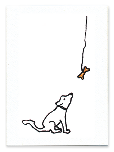 So Close (Dog)
