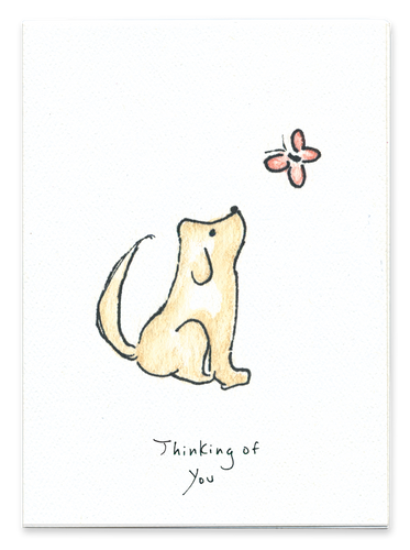 Thinking of You (Dog)