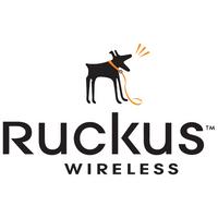 Ruckus Power supply (90 ‰ÛÒ 264 VAC 47-63 Hz), 902-1169-US00