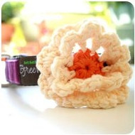 Creamsicle Flower for Dogs