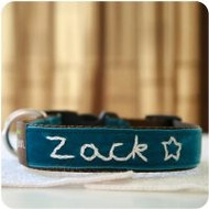 Zack' Personalized Dog Collar
