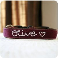 Olive' Personalized Dog Collar