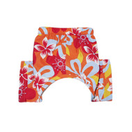 Tasmania Dog Swim Trunks