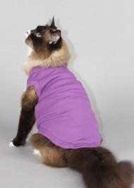 Plain Cat Shirt