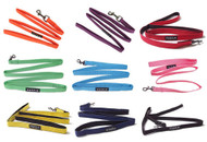 Two Tone Lead for Dogs