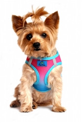Sugar Plum Ombre American River Choke Free Dog Harness