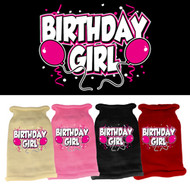 BIrthday Girl Knit Sweater (Various Colors)