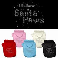 I Believe in Santa Paws Dog Hoodie
