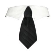 David Dog Tie Collar