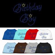Birthday Boy Rhinestone Dog Shirt
