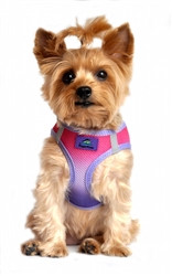 Raspberry Sundae Ombre American River Choke Free Dog Harness