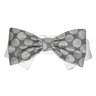 Bentley Dog Bow Tie