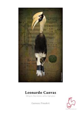 Hahnemuhle Leonardo Canvas