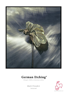 Hahnemuhle German Etching® 310gsm