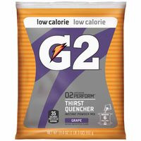 308-13478 | Gatorade G2 Powder