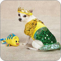 Dog Halloween Costumes & Dog Costumes - Dog Halloween Costume Ideas u0026 Styles | FunnyFur.com
