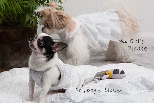 boys-blouse-main.jpg