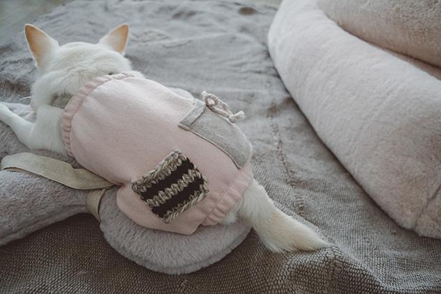 cotton-warmer-pants-main.jpg