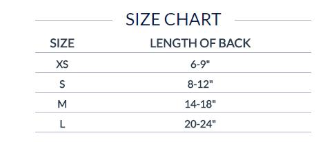 dn-jersey-size-chart.jpg