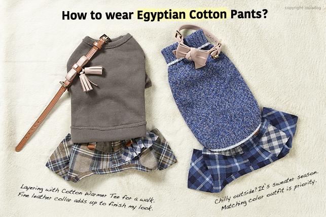 egyptian-cottom-pants-main.jpg