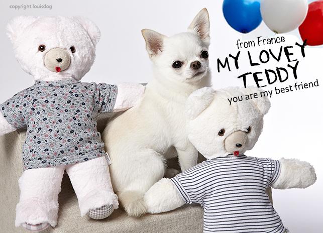 my-lovey-teddy-main.jpg