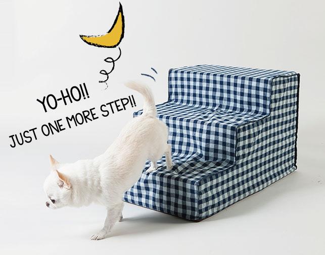 nighty-night-step-main.jpg