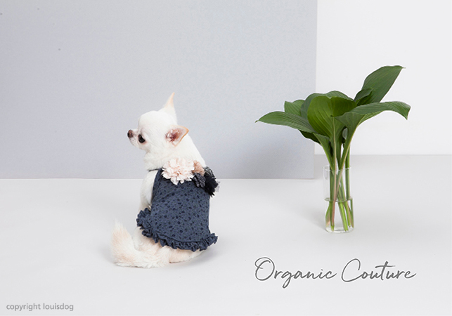 organic-couture-main.jpg