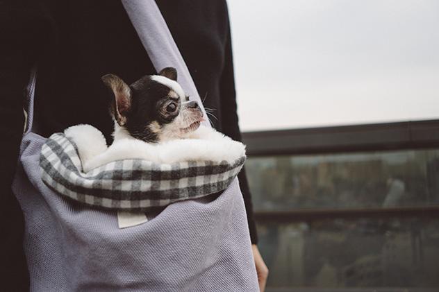 organic-yolo-sling-bag-main.jpg