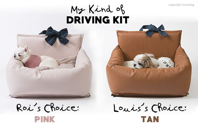 pink-driving-kit-main.jpg