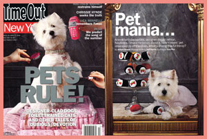 Sushi Pups in Time Out New York