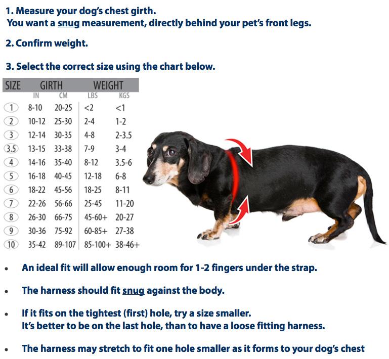 Buddy Belt Sizing Chart
