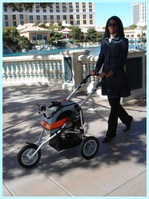 Sport Trike Stroller