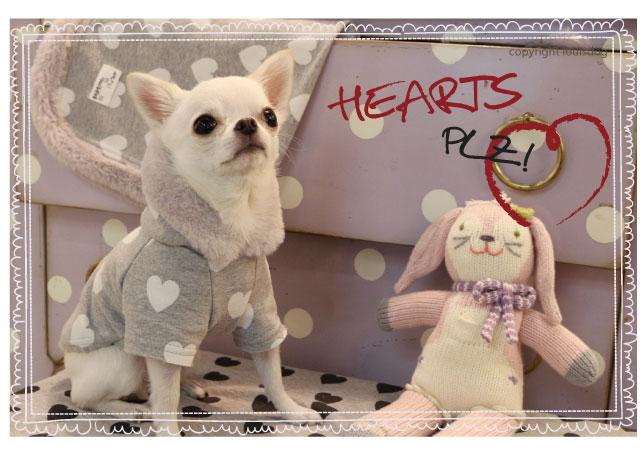 Louisdog Hearts Plz Hoodie