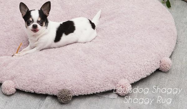 shaggy-rug2-edited-1.jpg