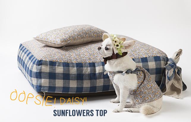sunflowers-top-main.jpg