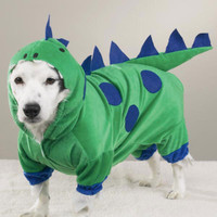 Dogzilla Dinosaur Dog Costume