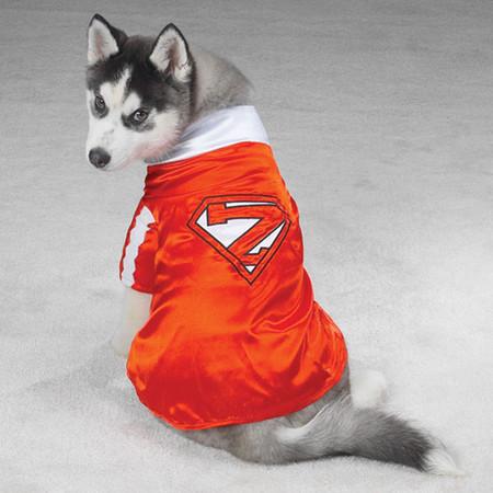 Mighty Dog Costume