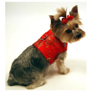 Asian Inspired Harness Wear