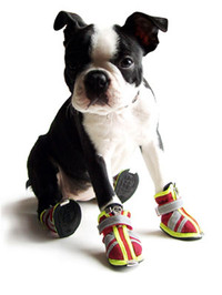Reflector Dog Boots