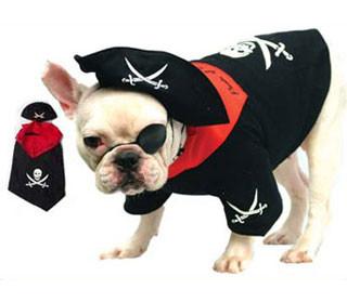 sc 1 st  FunnyFur & Pirate Dog Costume