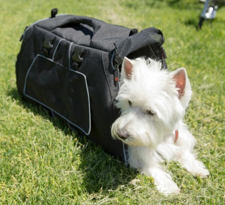 Dog Bag Jet Set Carrier
