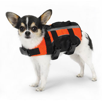 Orange Dog Life Vest Jacket