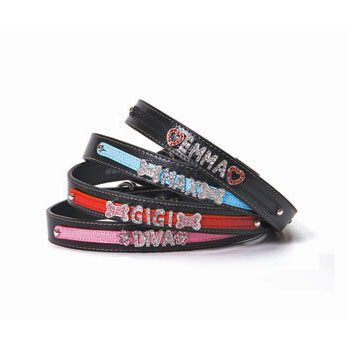 Two Tone Dog Collars