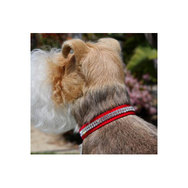 Giltmore Ultrasuede Collars