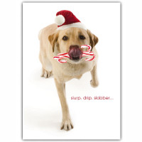 Yellow Lab Holiday Card