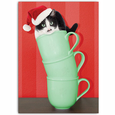 Cat Coffee Cup Holiday Card