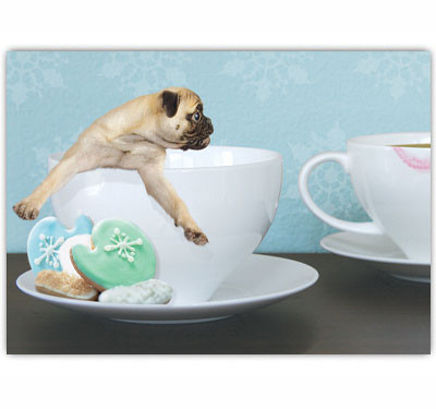 Pug Coffee Cup Holiday Card