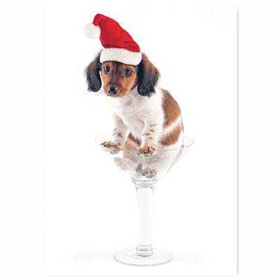 Wienertini Holiday Card